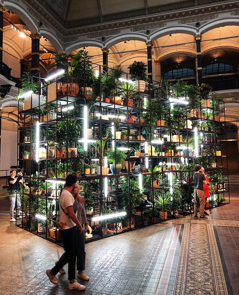 In der Eingangshalle eines historischen Gebäudes mit Säulen rundherum und Bögen, schönen Fliesen auf dem Boden, steht ein Gerüst aus Schwaben Metallstreben. Unzählige Pflanzen stehen in diesem Gerüst. Leuchtröhren bringen das Gerüst zum Leuchten.
