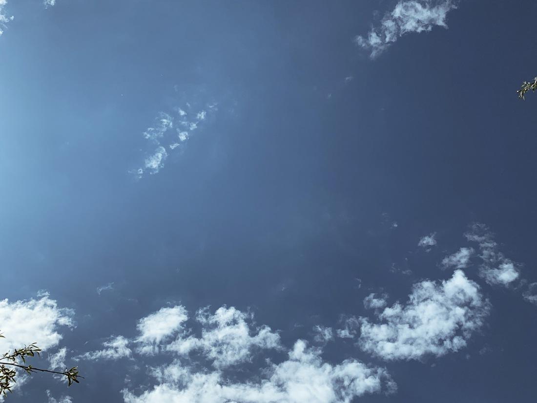 Himmel mit Wolken, die Sonne erhellt den Himmel auf der linken Seite. Sie ist selbst aber nicht zu sehen. Unten links und oben rechts sind Zweige von Bäumen zu sehen.